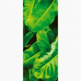 Fototapeta - DV1404 - Zelené listy