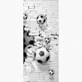Fototapeta - DV1457 - Futbalové lopty