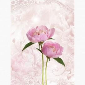 Fototapeta - PL1081 - Ružové kvety