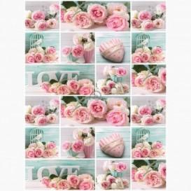 Fototapeta - PL1109 - Růžové růže