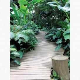 Fototapeta - PL1333 - Botanická záhrada