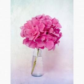 Fototapeta - PL1459 - Ružový kvet vo fľaši