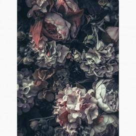 Fototapeta - PL1561 - Vintage kvety