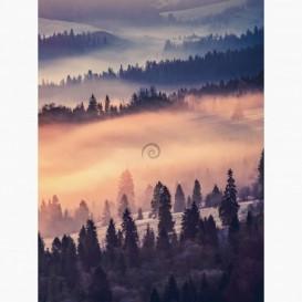 Fototapeta - PL1562 - Svitanie v zimnej krajine