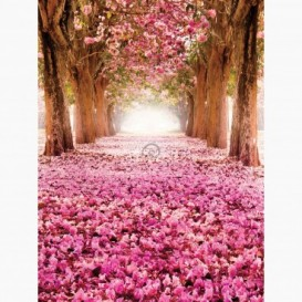 Fototapeta - PL1610 - Alej stromov s ružovými kvetmi