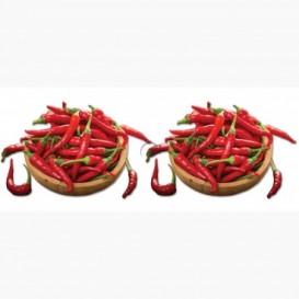 Fototapeta - PA5006 - Chilli papričky