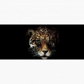Fototapeta - PA5048 - Leopardia hlava