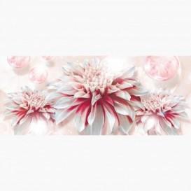 Fototapeta - PA5051 - Bielo-ružový kvet