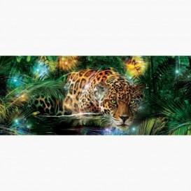 Fototapeta - PA5076 - Leopard