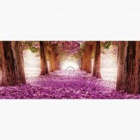 Fototapeta - PA5083 - Alej plná kvetov