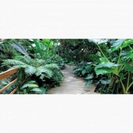 Fototapeta - PA5313 - Botanická záhrada