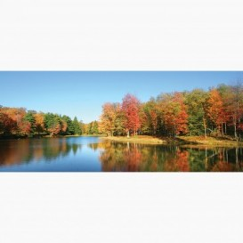 Fototapeta - PA5358 - Jeseň na brehu rieky