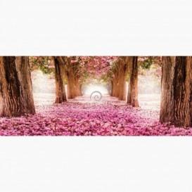 Fototapeta - PA5392 - Alej stromov s ružovými kvetmi