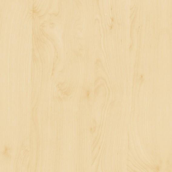 Samolepiaca fólia 200-8275 Breza 67,5cm x 15m
