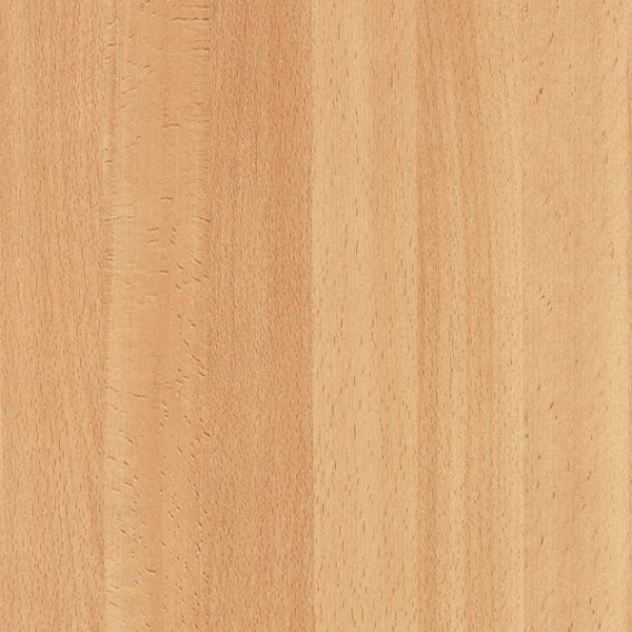 Samolepiaca fólia 200-2608 Buk stredný 45cm x 15m
