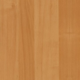 Samolepiaca fólia 200-5506 Jelša svetlá 90cm x 15m