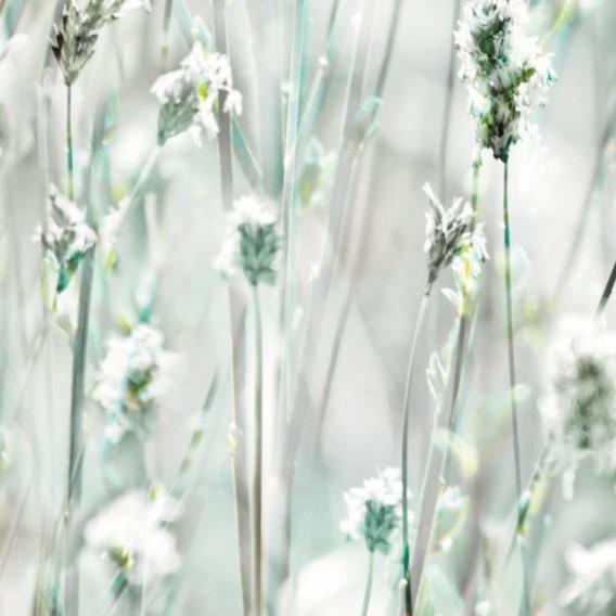 Samolepiaca fólia 200-3210 Slnečná tráva 45cm x 15m