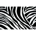 Samolepiaca fólia imitácia kože 11029 Zebra 67,5cm x 15m