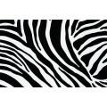 Samolepící fólie imitace kůže 11029 Zebra 67,5cm x 15m
