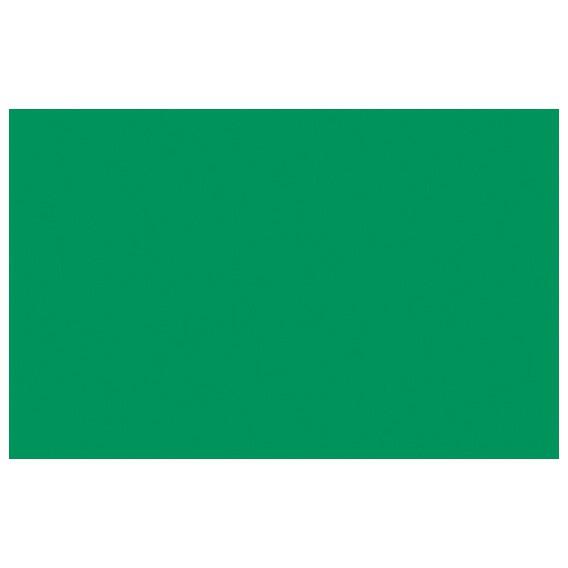 Jednofarebná samolepiaca fólia 10053 Zelená matná 45cm x 15m
