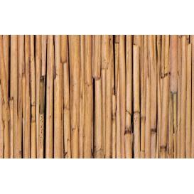 Samolepiaca fólia 10595 Bambus 67,5cm