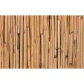 Samolepící fólie 10597 Bambus 90cm x 15m