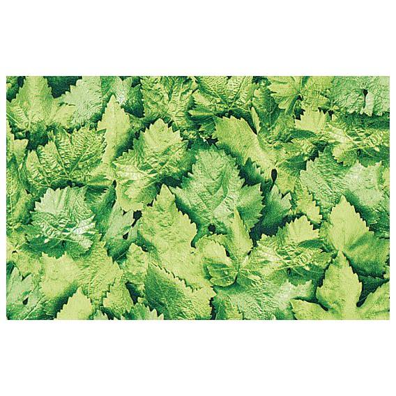 Samolepiaca fólia 10765 Listy 67,5cm x 15m