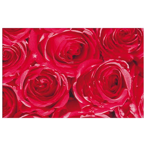 Samolepiaca fólia 12679 Ruže 45cm