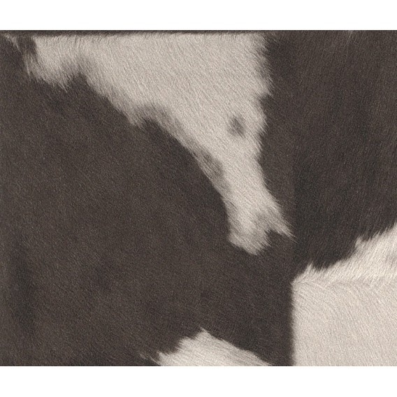 Rasch vliesová tapeta 473919 0,53x10m