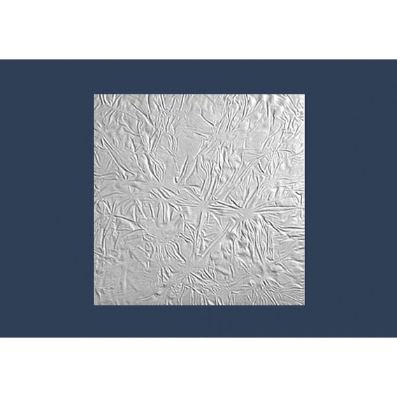 Polystyrenová stropní kazeta Skora 10mm-1m2