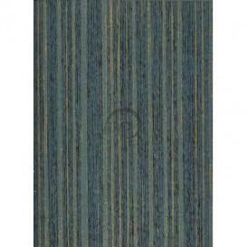 Vliesová tapeta 55525 0,75x10,05m