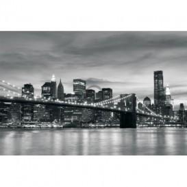 Fototapeta na stenu - FT0296 - Čiernobiely New York