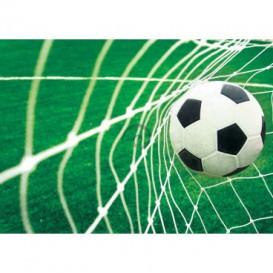 Fototapeta na stenu - FT0495 - Futbalová lopta