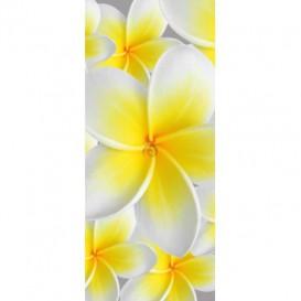 Dverová fototapeta - DV0003 - Žltobiely kvet