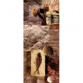 Dverová fototapeta - DV0001 - Mozaika skamenelín