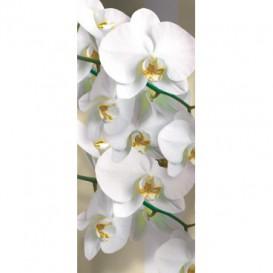 Dverová fototapeta - DV0319 - Biele kvety