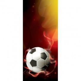 Dverová fototapeta - DV0652 - 3D futbalová lopta