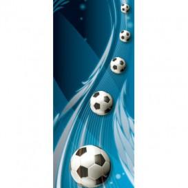 Dverová fototapeta - DV0653 - 3D futbalová lopty