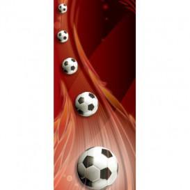 Dverová fototapeta - DV0654 - 3D futbalová lopty