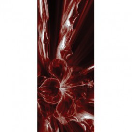 Dverová fototapeta - DV0689 - 3D abstrakcia