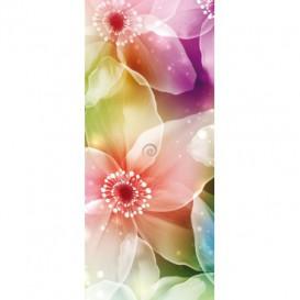 Dverová fototapeta - DV0183 - Farebné kvety