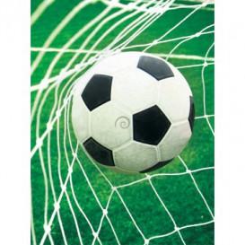 Fototapeta panel - PL0004 - Futbalová lopta
