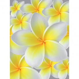 Fototapeta panel - PL0006 - Žltobiely kvet
