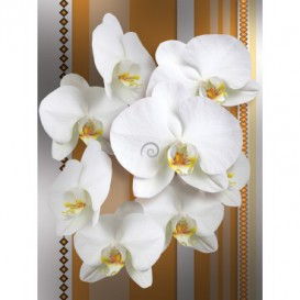 Fototapeta panel - PL0109 - Biele kvety na oranžovom pozadí