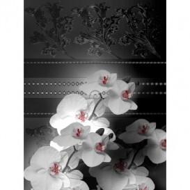 Fototapeta panel - PL0137 - Biele kvety na čiernom pozadí