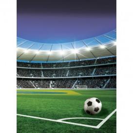 Fototapeta panel - PL0276 - Futbalový štadión