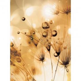 Fototapeta panel - PL0319 - Suchá tráva - oranžový efekt