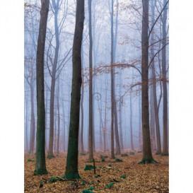 Fototapeta panel - PL0541 - Zahmlený les