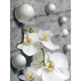 Fototapeta panel - PL0601 - 3D orchidea