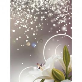 Fototapeta panel - PL0627 - Kvety na striebornom pozadí